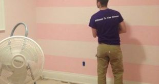 New baby girl room paint ideas accent walls benjamin moore ideas